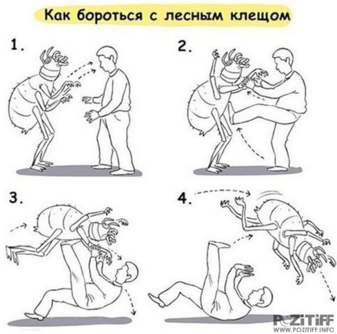 https://cs11.pikabu.ru/images/big_size_comm/2018-04_6/152491756118442632.png