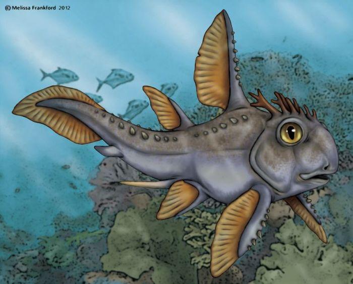 Echinochimaera Палеонтология, Карбон, Химера, Длиннопост, Рыба, Доисторические животные, Интересное, Познавательно