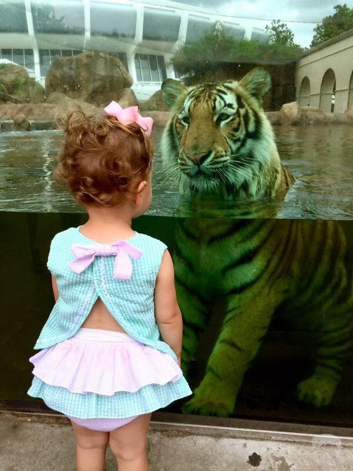 Девочка и тигр...