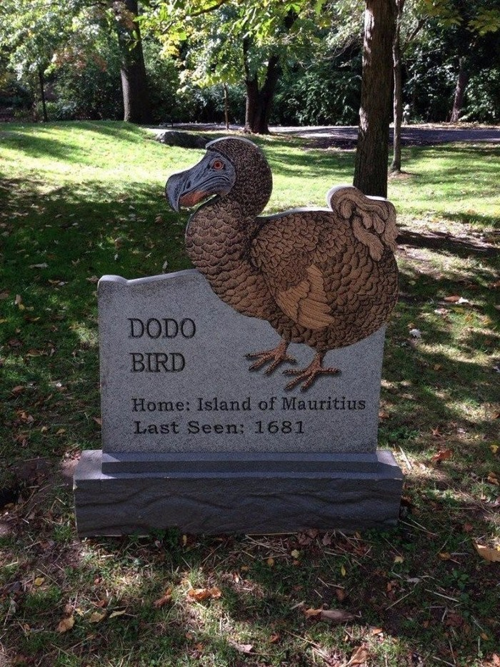 """Вечное немое напоминание """"человеку разумному"""". Высеченное в камне.Бронксский зоопарк, Нью-Йорк (США). Из сети, ВКонтакте, Природа, Вымерший вид, Длиннопост"""