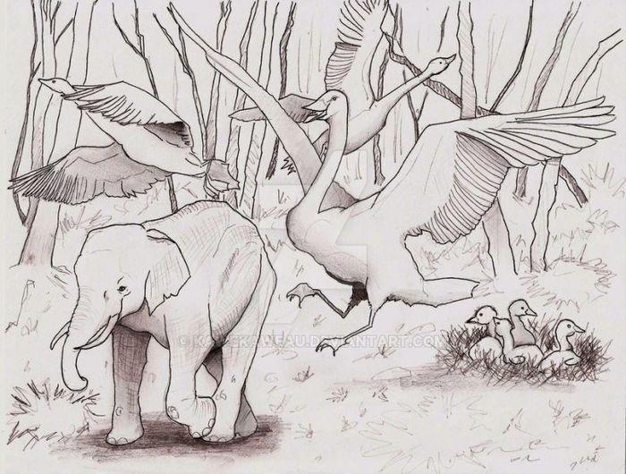 Лебедь-гигант (Cygnus falcone) Интересное, Познавательно, Длиннопост, Доисторические животные, Палеонтология, Лебеди, Птицы