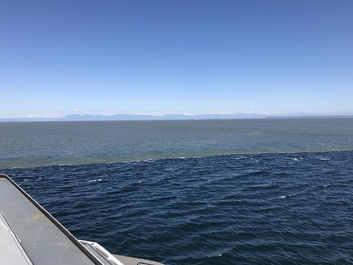 Два течения встретились у берегов Ванкувера.