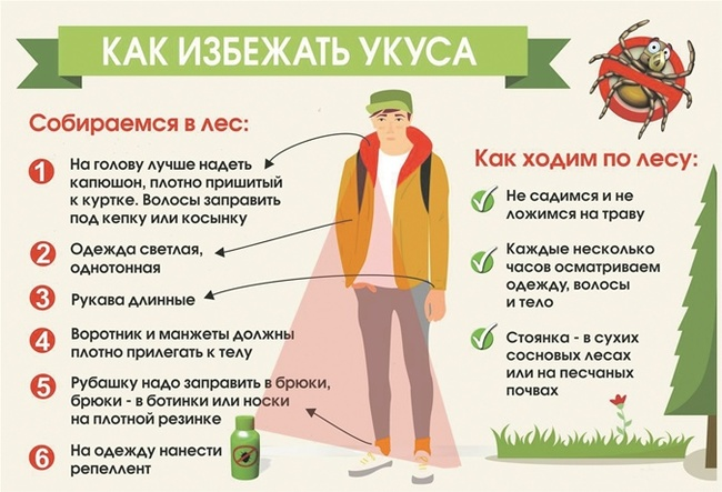 Как защищаются от клещей рефтамид, от клещей, средство от клещей, защита от клощей, энцефалит, клещ, костюм энцефалитный, акрицид, длиннопост