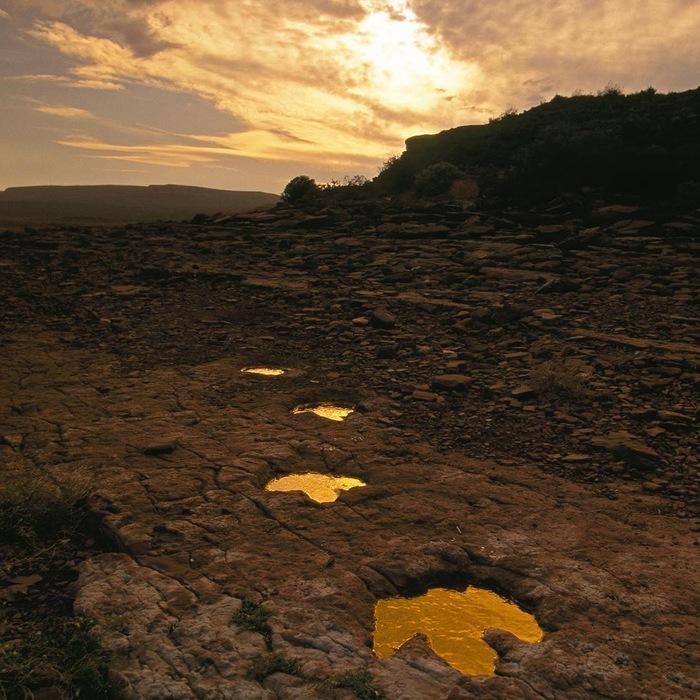 Следы динозавров, живших  в первой половине мелового периода. Эль-Чокон, Аргентина Фотография, The National Geographic, Instagram, Динозавры