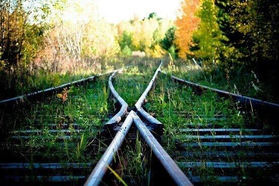 Нужный ракурс Фотография, Пейзаж, Заканчивающий фотограф