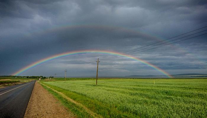 По дороге домой Дорога, Радуга, Поле, После дождя