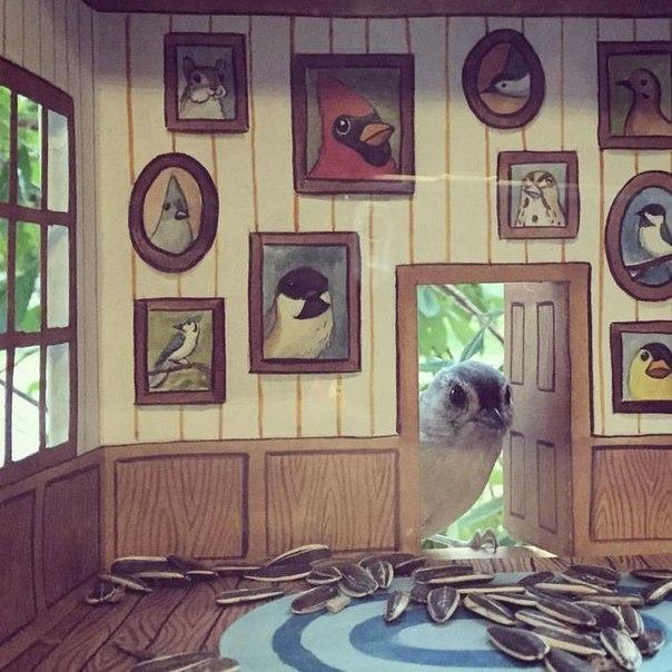 Птички в домашней обстановке Птицы, Кормушка для птиц, Кормушка, Иллюстратор, Милота, Длиннопост