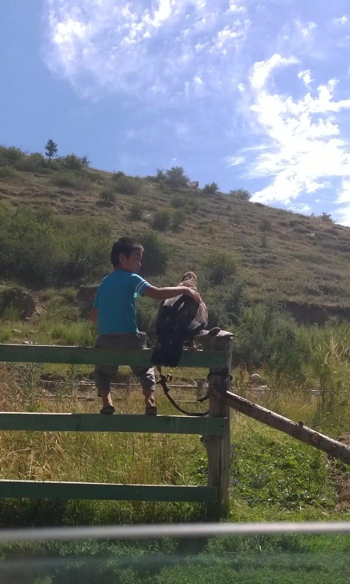Ничего необычного, мальчик сидит и обнимает орла.