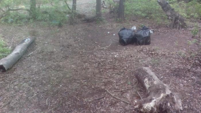 350 литров мусора вывез из парка. Чистомэн. Парк, Копейка, Чистомен, Уборка, Субботник, Рейд, Длиннопост