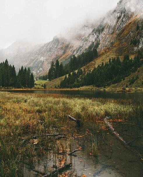 Где-то в Швейцарии Природа, Горы, Уединение, Спокойствие, Длиннопост