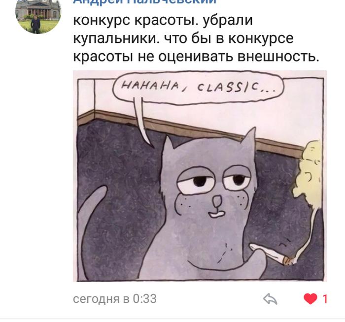 Конкурс красоты ВКонтакте, Конкурс красоты, Комментарии, Новости, Длиннопост, Скриншот, Феминизм