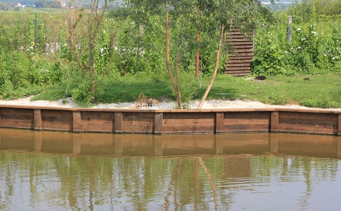 SOS! В московских прудах массово гибнут утята! Просьба поднять в топ! Утята, птицы, экология, Природа, проблема, защита животных, длиннопост, без рейтинга, негатив