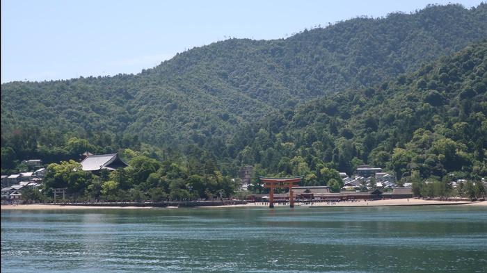 Остров Миядзима и его жители Япония, Олень, Животные, Милота, Длиннопост