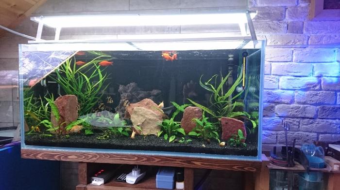 Продолжение аквариума 85х35 Аквариум, Переделка, Кривые руки, Длиннопост