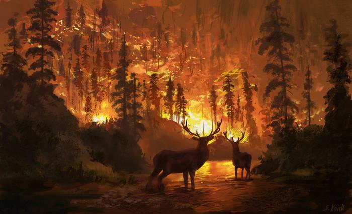 Пожар в горах