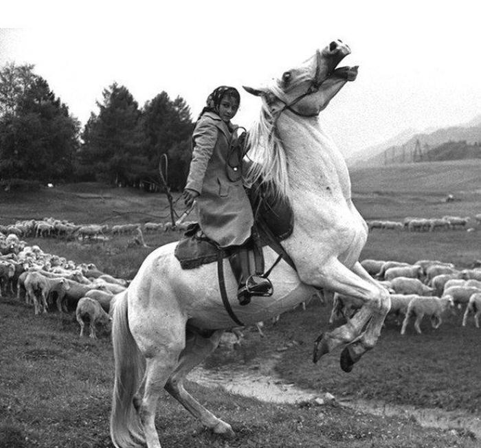 Сибирь, село Онгудай, 30 июля 1980 года.