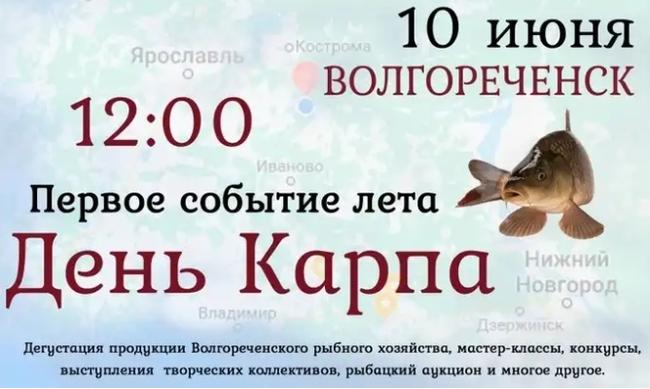 День Карпа Карп, Новости