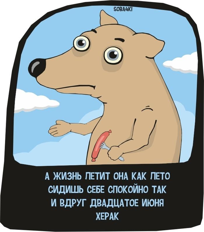https://cs11.pikabu.ru/post_img/2018/06/20/7/1529492493129179140.jpg