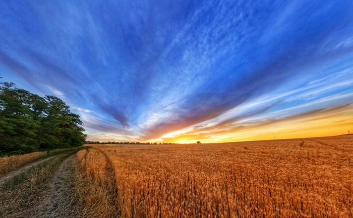 Русское поле hdr, панорама, пейзаж, Природа, поле, закат