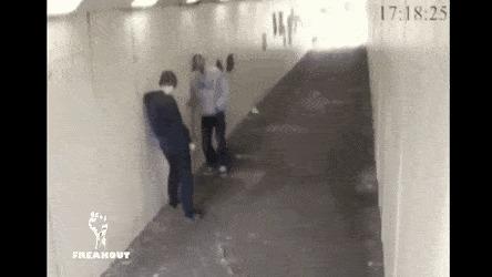 Когда твой друг - боксер