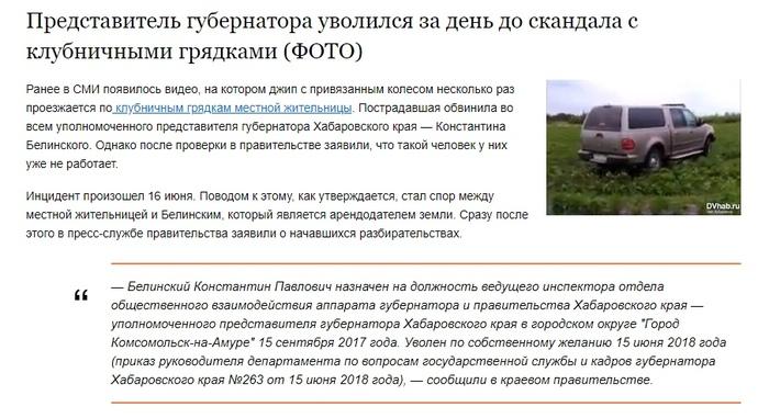 Вот это совпадение Клубника, Фермер, Негатив, Хабаровск
