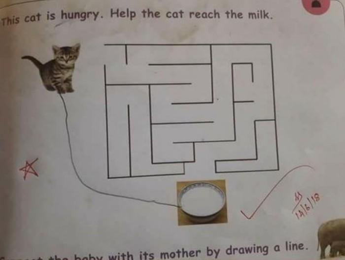 Не мудрствуя лукаво Кот, Детская задачка, Лабиринт, Молоко, Голод