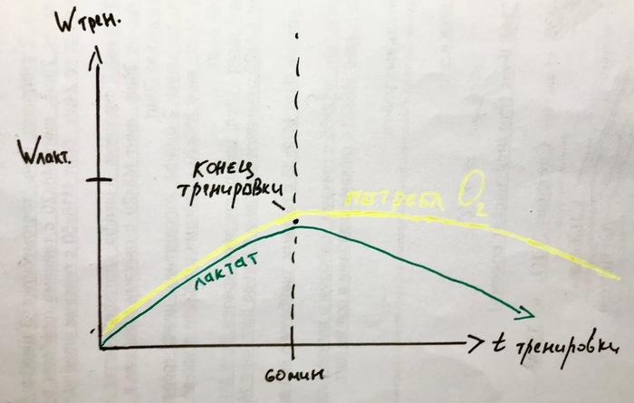 Как тренировать силу, скорость, выносливость? Мышечную массу? Тренировка, Мышечный объем, Мышечная масса, Как тренироваться, Сила, Выносиливость, Скорость, Длиннопост