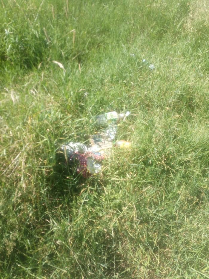 Немного о чистюлях и свиньях Нижегородская область, Уборка, Лига чистомена, Лето, Длиннопост