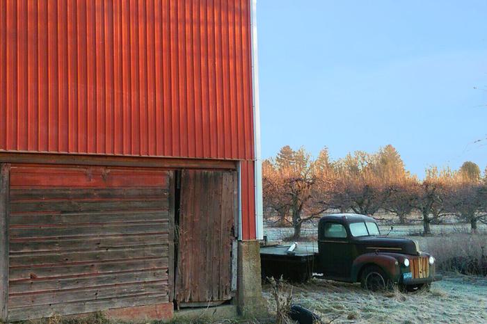 Раннее утро в Мичиганской глубинке Америка, США, Одноэтажная Америка, Заброшенная ферма, Американская глубинка