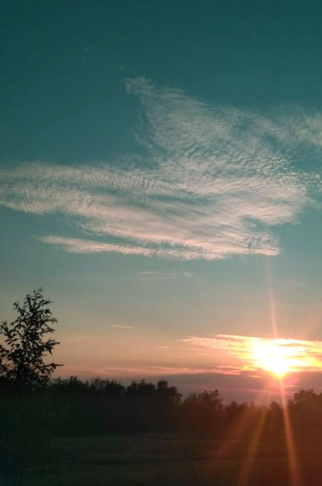Закат и орел Фотография, Орел, Закат, Облака
