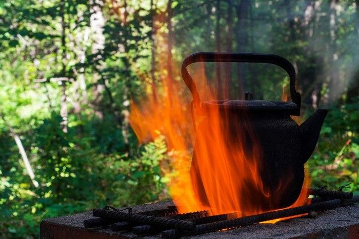 Лесной чай Фотография, Лес, Чайник, Огонь, Печь