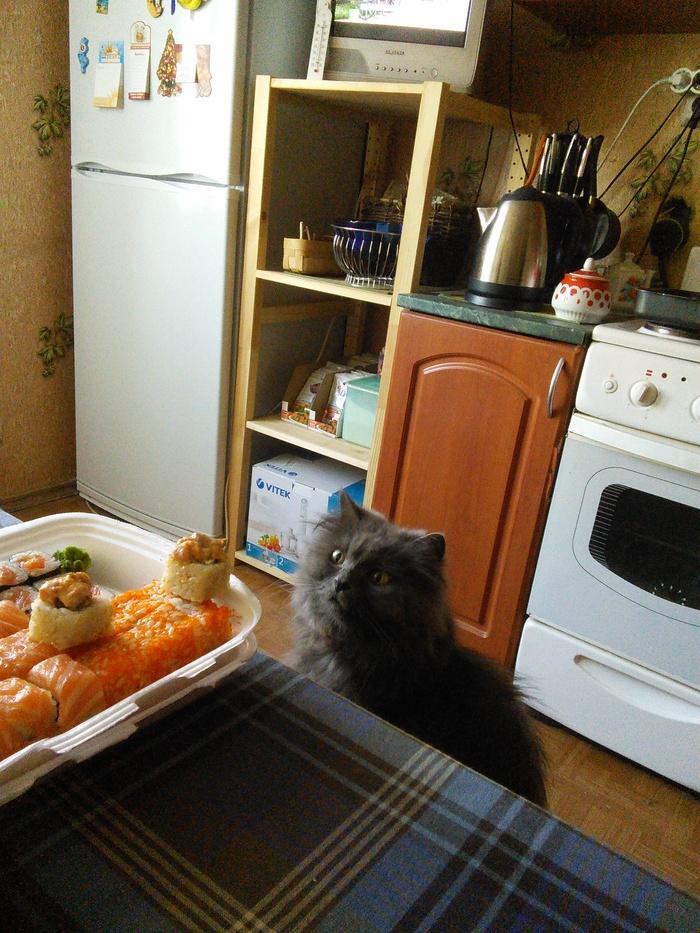 Мне вообще не интересно что у вас на столе... Кот, Котомафия, Персидский кот, Моя прелесть, Невкусно, Длиннопост