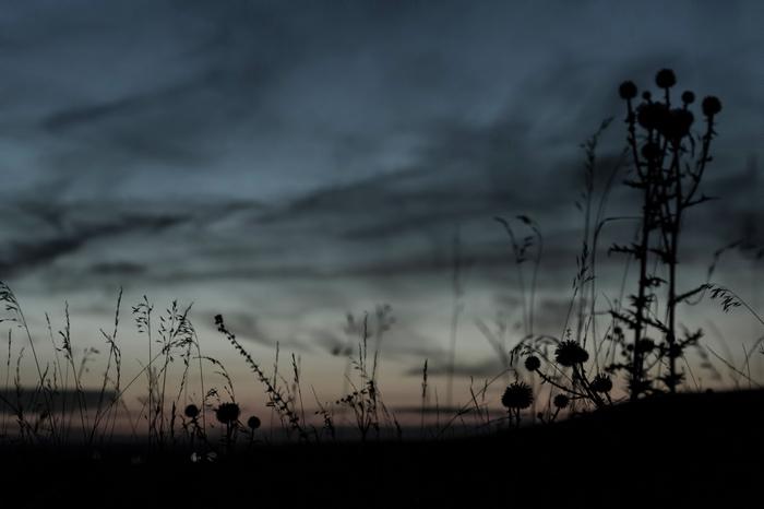 Немного мрачности Фотография, Природа