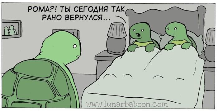 https://cs11.pikabu.ru/post_img/2018/07/14/11/1531595891189174012.jpg