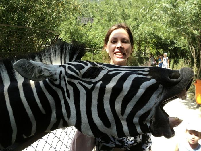 Внезапно Зоопарк, Удачно