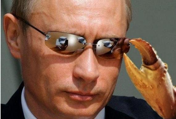 Путин - картошка Путин, Картофель