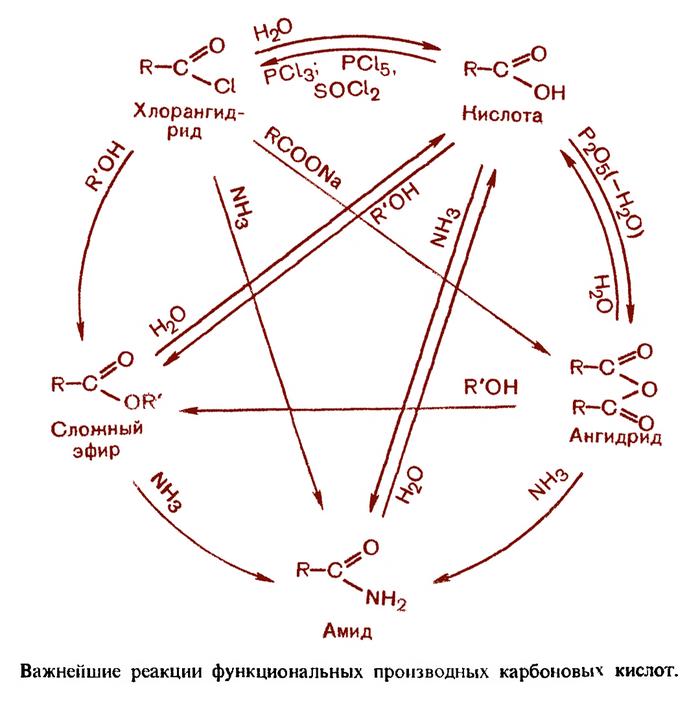 Всего лишь пособие по органической химии Химия, Учебник, Схема, Химическая реакция, Пентаграмма, Пособие, Органическая химия