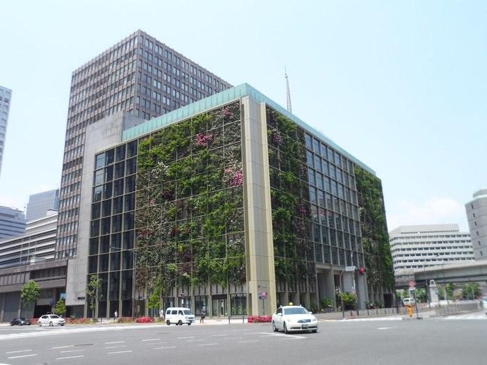 Огородный офис Экология, Огород, Экосфера, Япония, Офис, Длиннопост, Корпорации, Озеленение