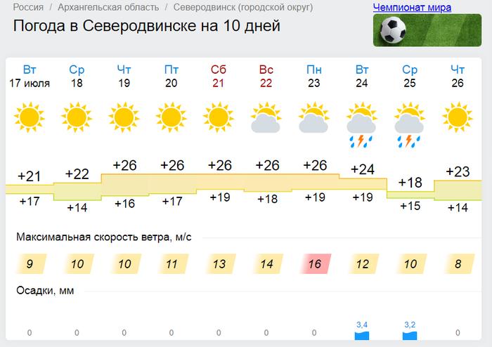 В этом году офигенское лето на нашем севере! Лето, Северодвинск, Белое море, Пляж
