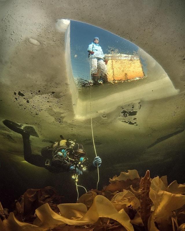 Подо льдом, Белое море Белое море, Аквалангист, Фотография