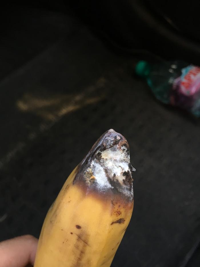 Продавец года Банан, Первый банановый