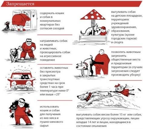 Законы о выгуле собак
