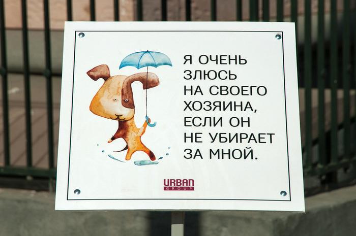 Правила выгула и содержания собак Собака, Закон, Животные, Домашние животные, Питомец, Длиннопост