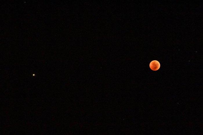 Космонавт Артемьев показал лунное затмение с борта МКС Космос, МКС, Затмение, Фотография, Длиннопост