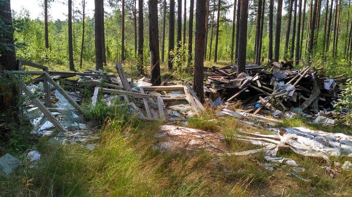 Несанкционированная свалка отходов в Ленобласти Без рейтинга, Люди свиньи, Спасение леса, Негатив, Длиннопост