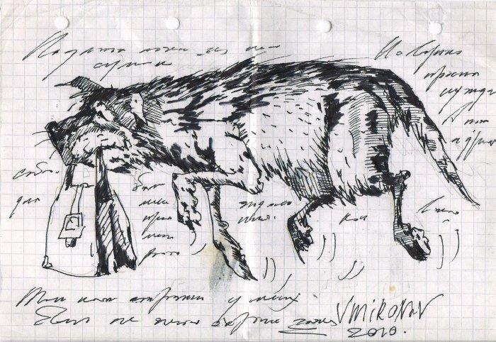 Человек собаке друг, это знают все вокруг История, Из жизни, Собака, Текст, Зарисовка, Длиннопост