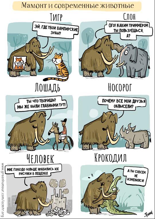 https://cs11.pikabu.ru/post_img/2018/08/03/6/153328563719444312.png