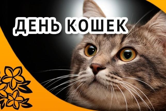 Сегодня празднуется Всемирный день кошек | Пикабу