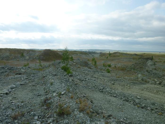 Новотемирские опалы Лига минералогии, Минералы, Опал, Геология, Длиннопост