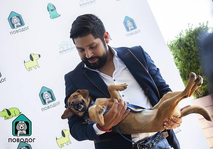 Мимишная новость! Перуанец забрал с собой бездомного щенка, которого нашел в Сочи во время ЧМ-2018 Сочи, Собака, Футбол, Перу